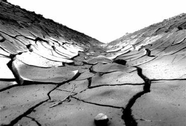 grayscale photo of soil cracks